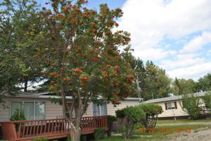 Neepawa Motel, Motel  Neepawa - big - 17