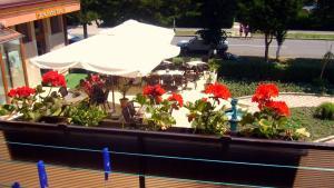 Hotel Turist, Hotels  Neptun - big - 8