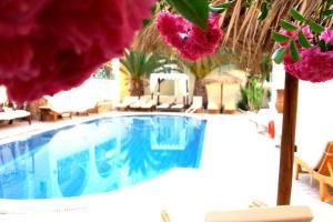 Hotel Zeus (Kamari)