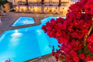 Ariadne Hotel Apartment, Residence  Platanes - big - 30