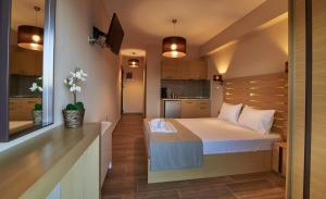Athos Thea Luxury Rooms, Apartmány  Sarti - big - 10