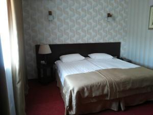 Hotel Сomplex Ak-Zhaik, Hotely  Karagandy - big - 78