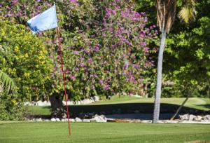 Cheeca Lodge and Spa (5 of 22)