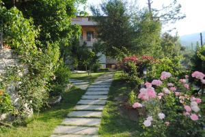 Kleo Cottages, Hotels  Kalkan - big - 2