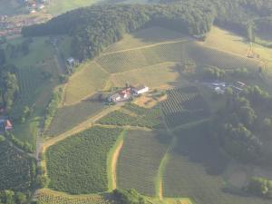 Weingut Dietl, Appartamenti  Riegersburg - big - 72