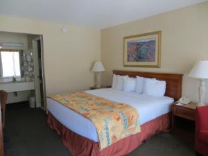 The Durango Downtown Inn, Hotely  Durango - big - 15