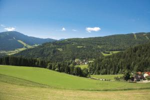 Ferienwohnung Hobelleitner, Apartmány  Sankt Blasen - big - 5