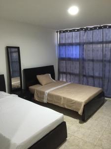 Hostal Central Beach, Мини-гостиницы  Сан-Андрес - big - 9