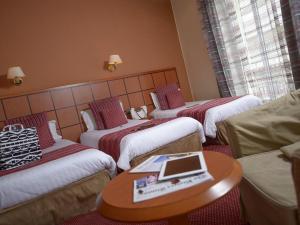 Best Western Roosevelt Nice, Hotel  Nizza - big - 3