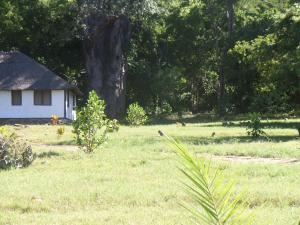 N'Tendele Lodge, Hostely  Meponda - big - 24