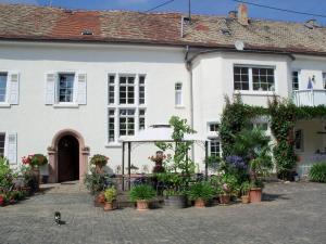 Weingut, Gästehaus und Kräuterhof