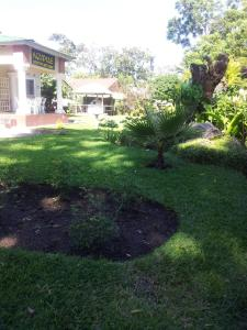 Nzipile Executive Guest House, Bed and breakfasts  Chingola - big - 21