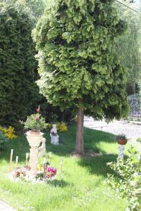 Villa Anastazis - Penzion Eden, Guest houses  Karlovy Vary - big - 143