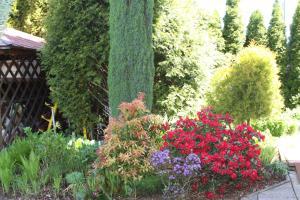Villa Anastazis - Penzion Eden, Guest houses  Karlovy Vary - big - 106