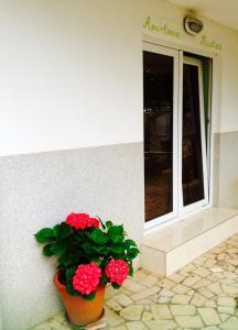 Guesthouse Villa Juric, Guest houses  Crikvenica - big - 31