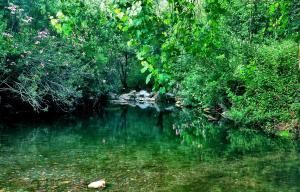 Centro de Naturaleza Cañada Verde, Farmházak  Hornachuelos - big - 39