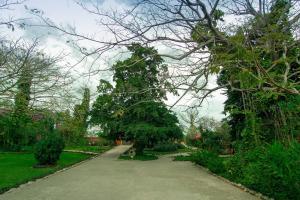 Hacienda Misné, Hotely  Mérida - big - 36