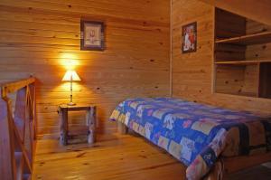 Hosteria Pichi Rincon, Penziony – hostince  Villa La Angostura - big - 9