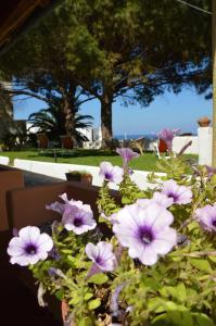 Case Vacanza Cafarella, Ferienwohnungen  Malfa - big - 65