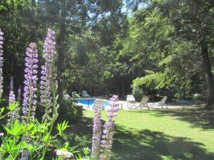 Hosteria Pichi Rincon, Penziony – hostince  Villa La Angostura - big - 34