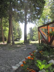 Hosteria Pichi Rincon, Penziony – hostince  Villa La Angostura - big - 28