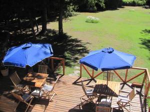 Hosteria Pichi Rincon, Penziony – hostince  Villa La Angostura - big - 43