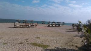 Ocean View, Ferienwohnungen  Playas - big - 32