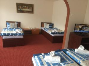 Hotel Le Baron, Hotel  Timisoara - big - 50