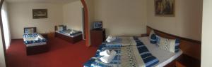Hotel Le Baron, Hotel  Timisoara - big - 51