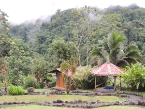 Pacuare River Lodge, Lodges  Bajo Tigre - big - 10