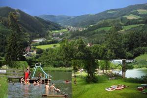 Gasthof Oberer Gesslbauer, Hotels  Stanz Im Murztal - big - 11