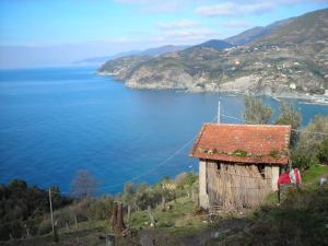 Il Ruscello, Bed & Breakfasts  Levanto - big - 15