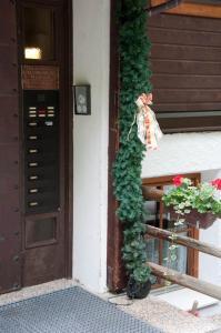 Haus Antonius Lilie, Apartmanok  Heiligenblut - big - 26