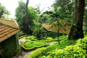 The Tall Trees, Resorts  Munnar - big - 24