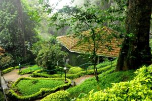 The Tall Trees, Resorts  Munnar - big - 27