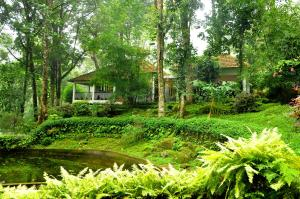 The Tall Trees, Resorts  Munnar - big - 29