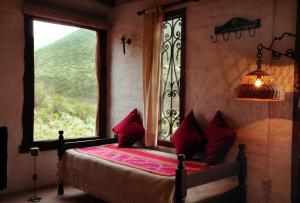 Las Margaritas, Lodge  Potrerillos - big - 8