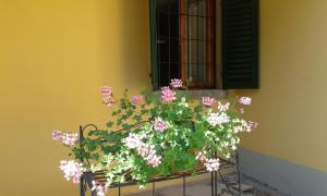 Villa Ape Rosa Relais, Bed and breakfasts  Florence - big - 36