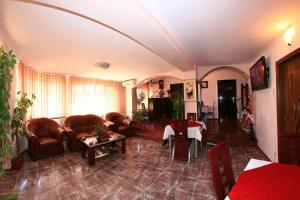 Pensiunea Radena, Guest houses  Arad - big - 1