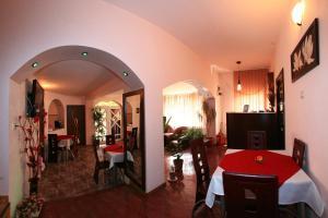 Pensiunea Radena, Guest houses  Arad - big - 28