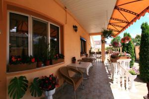 Pensiunea Radena, Guest houses  Arad - big - 27