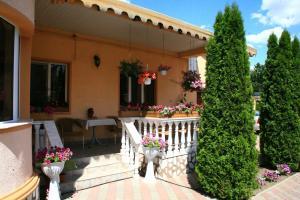 Pensiunea Radena, Guest houses  Arad - big - 33