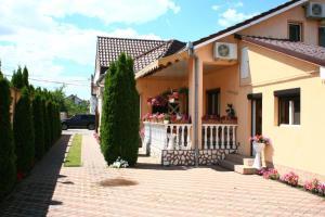 Pensiunea Radena, Guest houses  Arad - big - 32