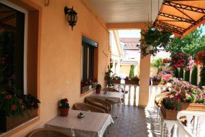 Pensiunea Radena, Guest houses  Arad - big - 34