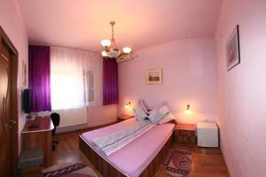 Pensiunea Radena, Guest houses  Arad - big - 20