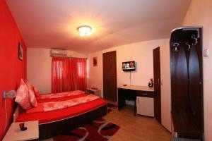 Pensiunea Radena, Guest houses  Arad - big - 16