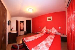 Pensiunea Radena, Guest houses  Arad - big - 15