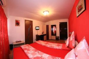 Pensiunea Radena, Guest houses  Arad - big - 14