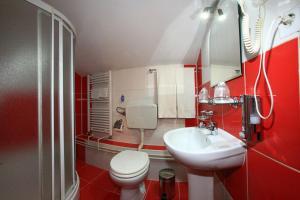 Pensiunea Radena, Guest houses  Arad - big - 13