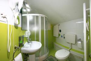 Pensiunea Radena, Guest houses  Arad - big - 9